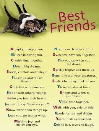 birthday quotes for best friends birthday quotes comments and about best friends